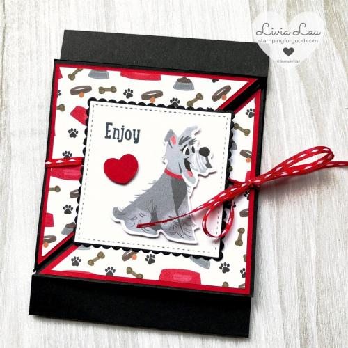 Playful Pets Fancy Fold Card