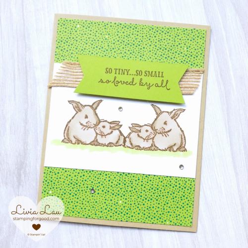 Wildly Happy Rabbits Card